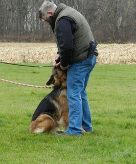 Kaza front training